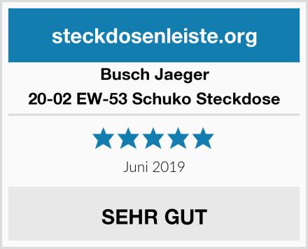 Busch-Jaeger 20-02 EW-53 Schuko Steckdose Test